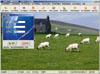 标签印刷管理软件